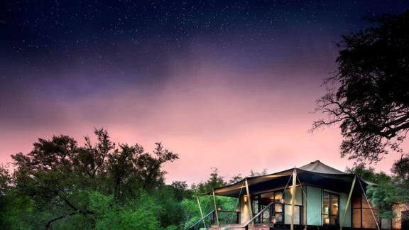 Ngala Tented Camp Tented Suite -