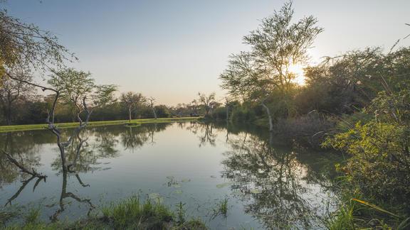 Jabulani Safari View -