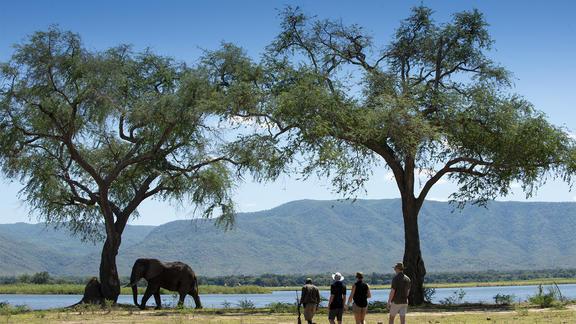 Nyamatusi Camp - The beauty of Nyamatusi