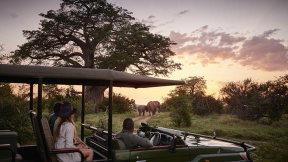 Victoria Falls River Lodge - Included Activities - Morning and afternoon game drives
