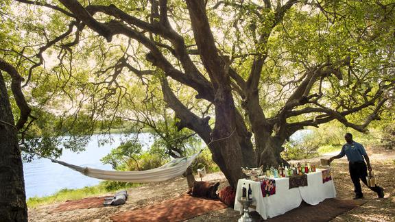 Magical picnics -